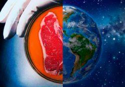 Ci stiamo mangiando la Terra