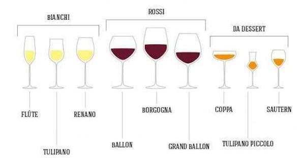 Disegno dei diversi tipi di bicchieri per il vino