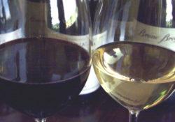 Bicchiere di vino rosso e di vino bianco