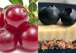 Torta Raw ai mirtilli e crunberry
