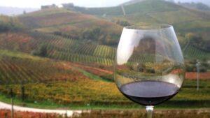 Immagine di unn bicchiere di Barolo tra le colline