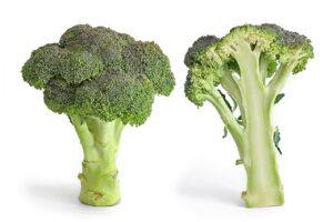 Immagine di un broccolo