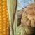 Immagine pannocchia e biscotti di mais