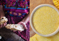 Arepas e farina di mais